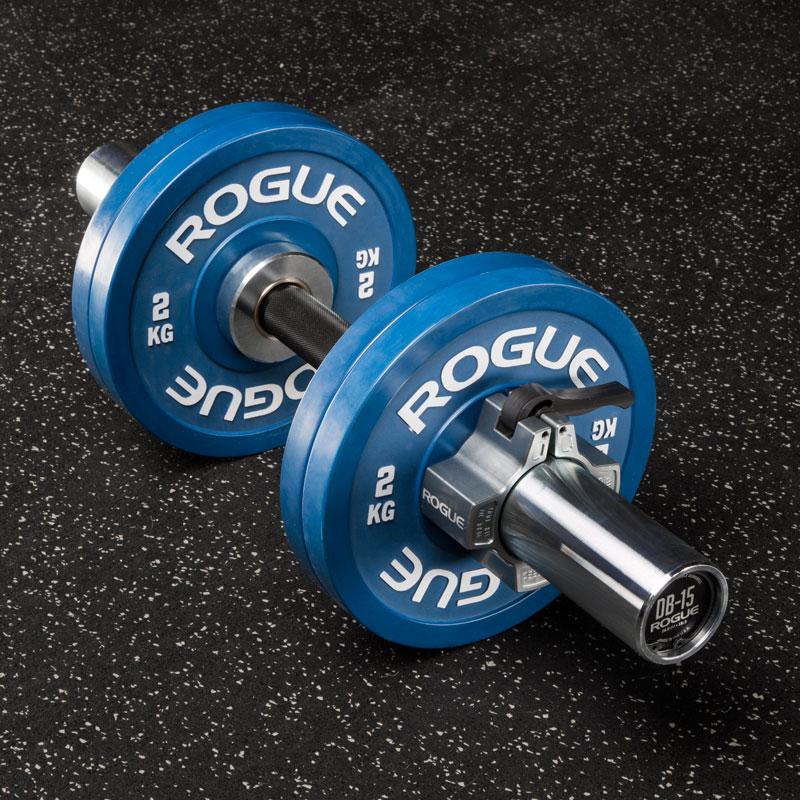 Rogue Loadable Dumbbells Rogue Fitness