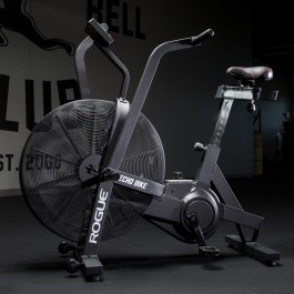 Rogue Echo Bike