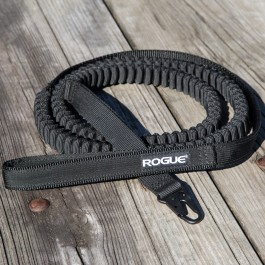 Rogue Flex Dog Leash