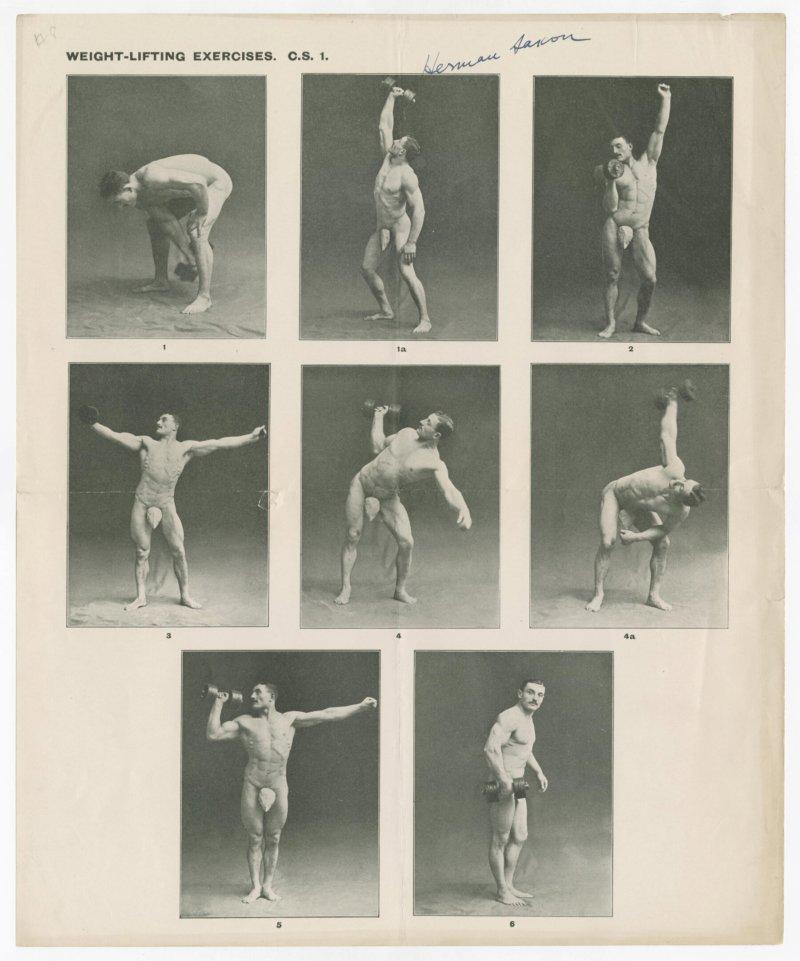 Hermann Saxon Weight-Lifting Exercises