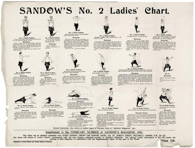 Sandow's No.2 Ladies Chart