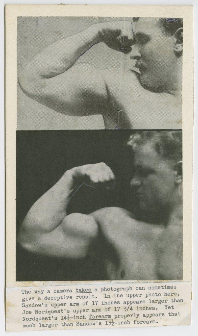 Sandow's arm and Nordquest's arm