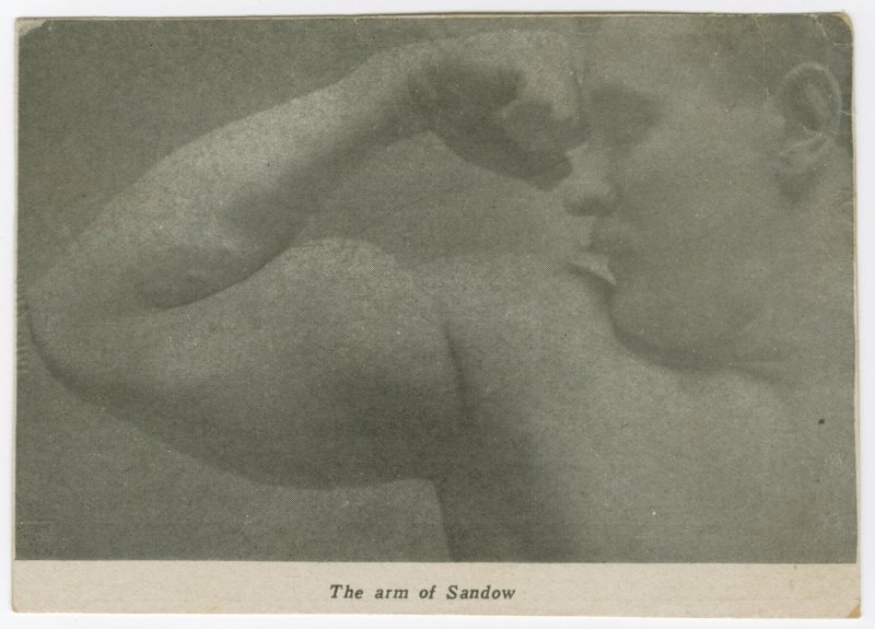 The arm of Sandow