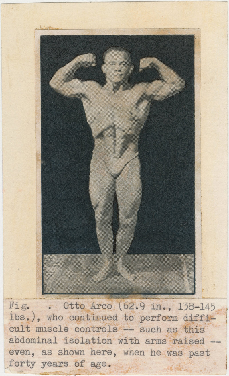 Fig. Otto Arco